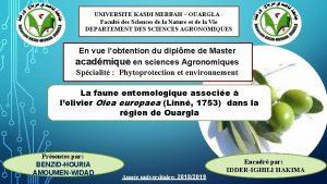 UNIVERSITE KASDI MERBAH OUARGLA Facult des Sciences de
