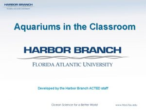 Aquariums in the Classroom Developed by the Harbor
