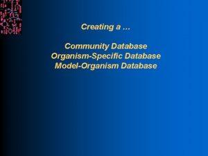 Creating a Community Database OrganismSpecific Database ModelOrganism Database