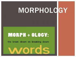 MORPHOLOGY INDEX 1 Wh at is Morphology 2