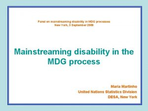 Panel on mainstreaming disability in MDG processes New