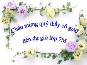 Gio vin Thanh Thy Trng THCS Hi nh