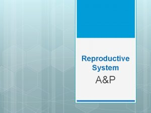 Reproductive System AP Reproductive System Functionproduce new life
