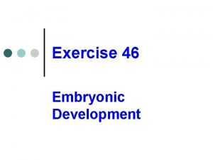 Exercise 46 Embryonic Development Developmental stages of humans