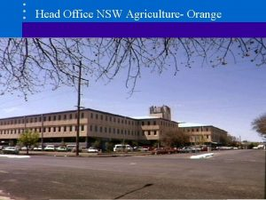 Head Office NSW Agriculture Orange NSW Agriculture Corporate