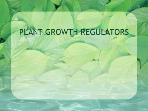 PLANT GROWTH REGULATORS Plant Growth Regulators AKA Plant
