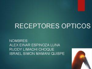 RECEPTORES OPTICOS NOMBRES ALEX EINAR ESPINOZA LUNA RUDDY