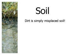Soil Dirt is simply misplaced soil SOIL A