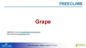 FREECLIMB Grape Gabriella De Lorenzis gabriella delorenzisunimi it