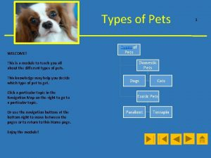 Types of Pets WELCOME This is a module