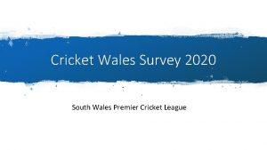 Cricket Wales Survey 2020 South Wales Premier Cricket