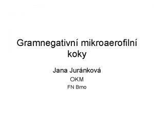 Gramnegativn mikroaerofiln koky Jana Jurnkov OKM FN Brno