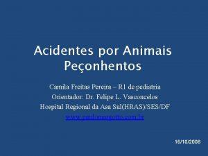 Acidentes por Animais Peonhentos Camila Freitas Pereira R