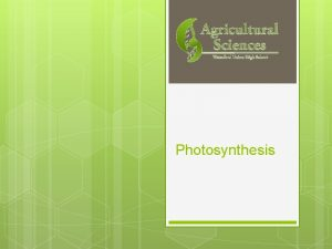 Photosynthesis Overview of Photosynthesis in a nutshell Plants