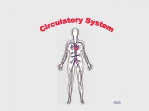 2006 What is the circulatory system The circulatory