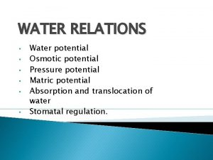 WATER RELATIONS Water potential Osmotic potential Pressure potential