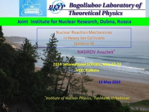 Joint Institute for Nuclear Research Dubna Russia Nuclear