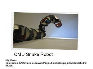 CMU Snake Robot http wwwcgi cs cmu eduafscs