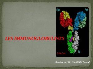 LES IMMUNOGLOBULINES Ralis par Dr HAOUAM Fouad Les