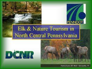 Elk Nature Tourism in North Central Pennsylvania Pennsylvania