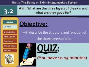 Unit 3 The Skinny on SkinIntegumentary System 3