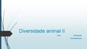 Diversidade animal II Filos Arthropoda Echinodermata Filo Arthropoda