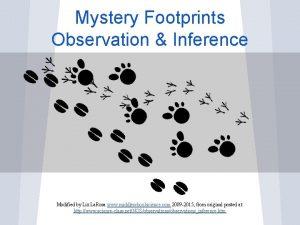 Mystery Footprints Observation Inference Modified by Liz La