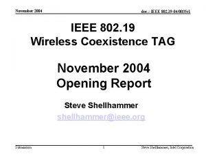 November 2004 doc IEEE 802 19 040035 r