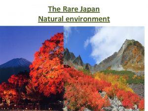 The Rare Japan Natural environment The Rare Japan