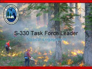 S330 Task Force Leader S330 Task Force Leader
