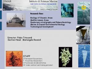 Research lines Geology of Oceanic Areas Mediterranean Areas