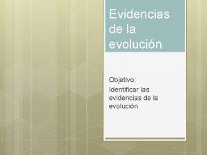 Evidencias de la evolucin Objetivo Identificar las evidencias