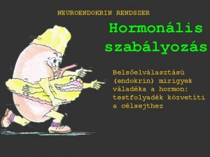NEUROENDOKRIN RENDSZER Hormonlis szablyozs Belselvlaszts endokrin mirigyek vladka