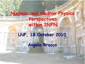Nuclear and Hadron Physics Perspectives within INFN LNF