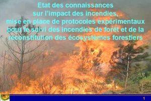 Etat des connaissances sur limpact des incendies mise
