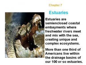 Chapter 7 Estuaries are semienclosed coastal embayments where
