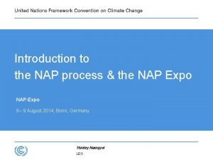 Introduction to the NAP process the NAP Expo