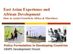 East Asian Experience and African Development How to