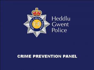CRIME PREVENTION PANEL What are Crime Prevention Panels
