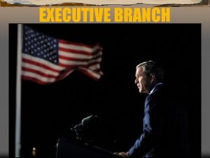 EXECUTIVE BRANCH Chapter 8 Focus 1 p 213