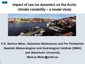 Impact of sea ice dynamics on the Arctic
