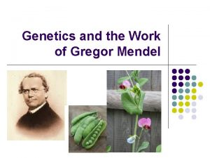 Genetics and the Work of Gregor Mendel Gregor