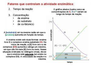 Fatores que controlam a atividade enzimtica 3 Concentrao