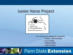 Junior Horse Project PA 4 H Horse Development