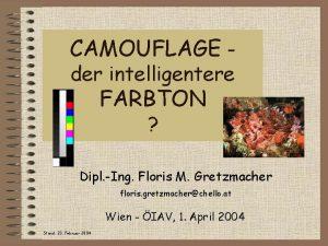 CAMOUFLAGE der intelligentere FARBTON Dipl Ing Floris M