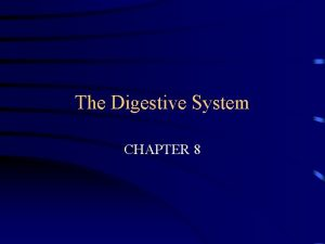 The Digestive System CHAPTER 8 FUNCTION INGEST FOOD