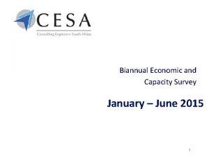 Biannual Economic and Capacity Survey January June 2015