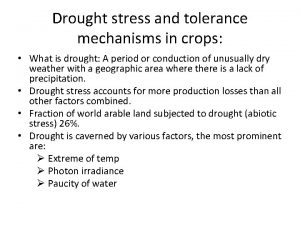 Drought stress and tolerance mechanisms in crops What