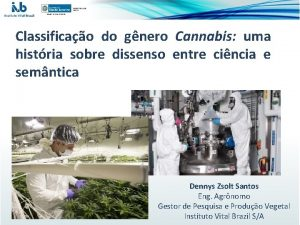 Classificao do gnero Cannabis uma histria sobre dissenso