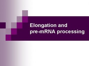 Elongation and prem RNA processing MBV 4230 Introduction